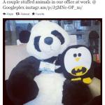 Google Penguin Update – další mazel, co žere webový spam?